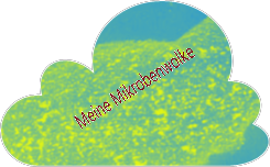 Meine Mikroben-Wolke