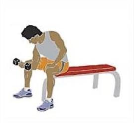 Dumbel lifter-Kraftsport