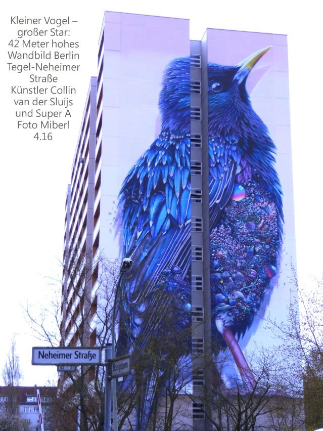 1 Großer Star-Berlin-Neheimerstr